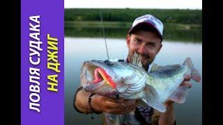 Ловля судака на джиг: выбор силиконовых приманок. [Crazy Fish]