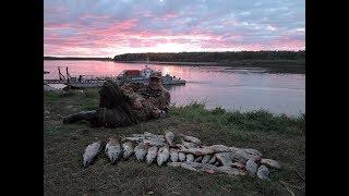 Рыбалка на Иртыше в начале сентября 2017, день 1