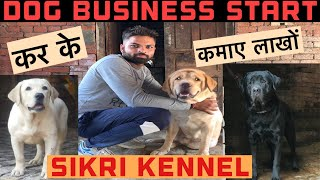 Dog बिज़नेस कैसे शुरू करें || Full information || Sikri kennel (Karnal Haryana)