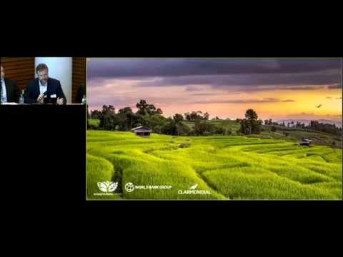 Steps Toward Green: Book Launch & Panel