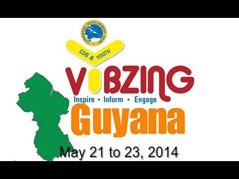 2014 VYBZING Guyana Youth Forum Review