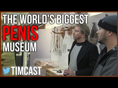 THE PENIS MUSEUM OF REYKJAVIK: THE WORLD'S BIGGEST PENIS COLLECTION