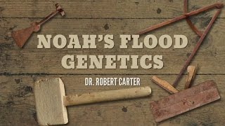 Origins: Noah's Flood Genetics