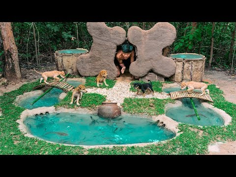 Rescued Abandoned Puppies Feeding Building Mud Bone Dogs And Fish Pond (FULL VIDEO)