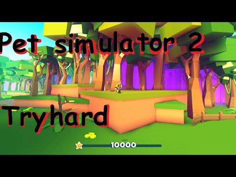Pet Simulator 2 Update 1 Free Vip Server Youtube