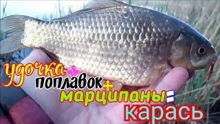 Рыбалка Карась никак не хотел сниматься на камеру Красивое озеро