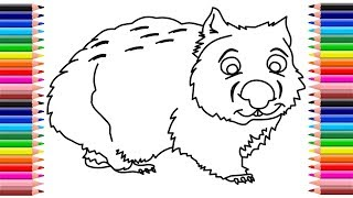 Wombat drawing | How to draw a wombat step by step