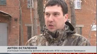 Фотоловушки на тигров. Новости. 22/03/2017. GuberniaTV