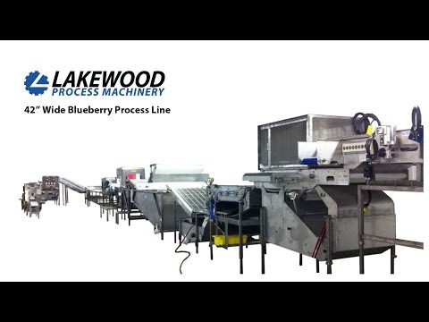 Lakewood's Blueberry Processing Line