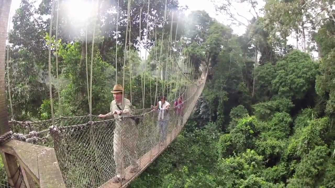& Canopy Walk Ghana Rev - YouTube
