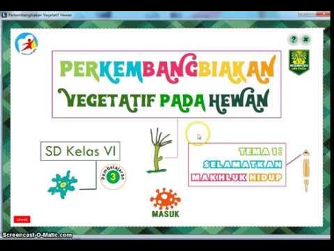 5200 Gambar Reproduksi Vegetatif Pada Hewan HD Terbaru