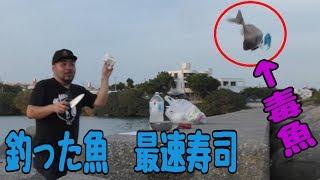釣って最速で捌いて握るお寿司【新鮮】 thumbnail