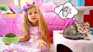 디아나는 새끼 고양이 키우는 법을 배워요.