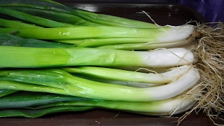 "Onion health benefits. Green onions are ,,grocery store"" of vital substances!"