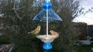 Como Fazer um Comedouro Para Pássaros