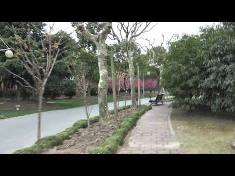 Shanghai: Inside Century Park