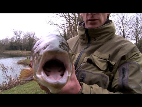Stalking MONSTER BROWN TROUT on a 4 weight Rod -  The Big Fish
