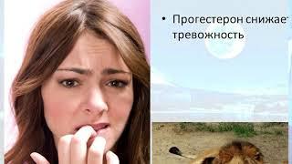 Где заканчивается любовь и начинаются гормоны? Екатерина Виноградова