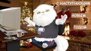 Шуточные поздравления с наступающим Новым годом новогодние пожелания прикольные видео