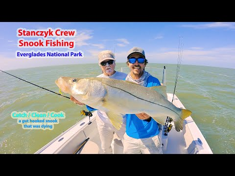 The Stanczyk Crew Snook Fishing - Sr. Lands A JUMBO - Clean/Cook A Gut Hooked Snook!
