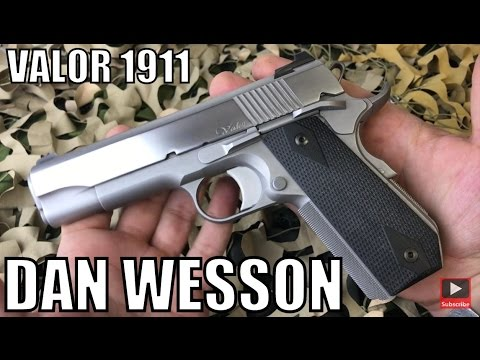 CZ Dan Wesson Valor Stainless Hand Fit 1911 45 Pistol Overview - New World  Ordnance