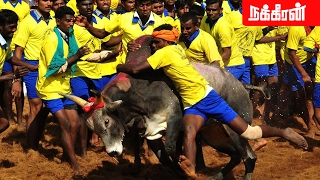 Jallikattu after two years | Avaniyapuram - Tamil Nadu