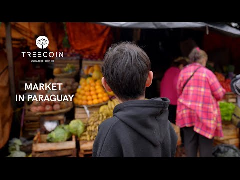TreeCoin: Experience a market in Paraguay🇵🇾