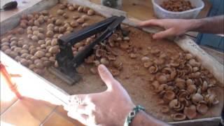Spanien 2012: vlog 5 - gårdsliv