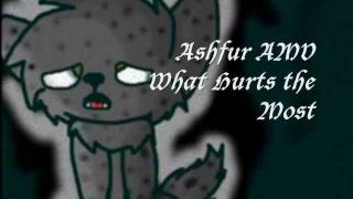 Ashfur AMV-What Hurts the Most PREVIEW