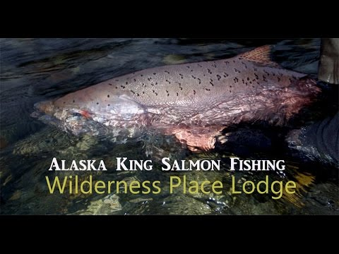 June Alaska King Salmon Fishing ~ Wilderness Place Lodge