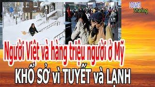 Người Việt và h,à,ng tr,i,ệ,u ng,ư,ờ,i ở Mỹ KH,Ổ S,Ở v,ì ... - Donate Sharing