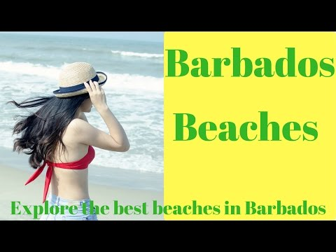 Barbados Beaches - Explore the best beaches in Barbados!
