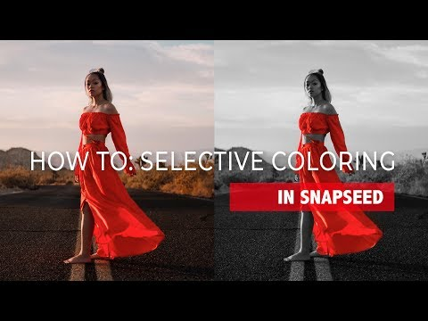 HOW TO: SELECTIVE COLORING (COLOR SPLASH) IN SNAPSEED IN 3 STEPS! (Raptors Inspired)