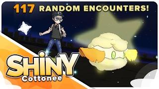 live shiny cottonee in 117 random encounters in sun moon