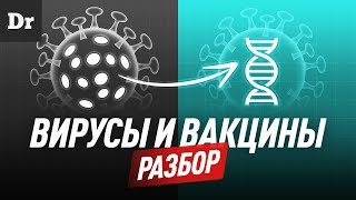 Вирусы и вакцины РАЗБОР