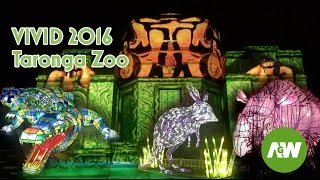 "Vivid Sydney  - Vivid Taronga Zoo - Vivid 2016 Festival Light Show ""Be the Light for the Wild"""
