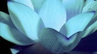 Уроки Души. Инструменты Духа, Души и Тела. Мастера Света. Ирина Деменко