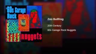 Zoo Bullfrog
