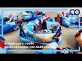 Vídeo: Braga cuello personalizada todo color + 100 pzas.