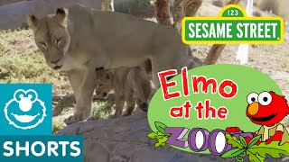 Sesame Street 06 - Elmo Meets Animal Families