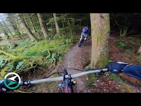 Biking Brechfa in South Wales | EMTB Forums Group Ride