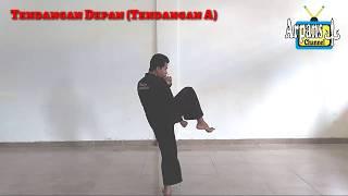 Video TEKNIK TENDANGAN PENCAK SILAT   Latihan Pencak Silat   Tutorial Teknik Pencak Silat    Pagar Nusa download MP3, 3GP, MP4, WEBM, AVI, FLV September 2018