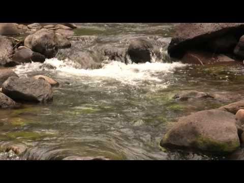 Fishing the Roaring Fork Valley