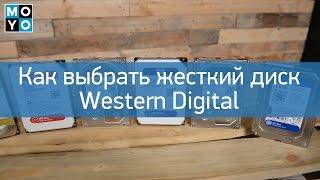 Как выбрать жесткий диск Western Digital