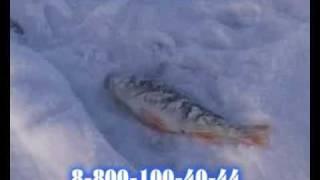 Зимняя рыбалка на базе Авалон(Зимняя рыбалка на базе Авалон., 2009-11-02T09:51:45.000Z)