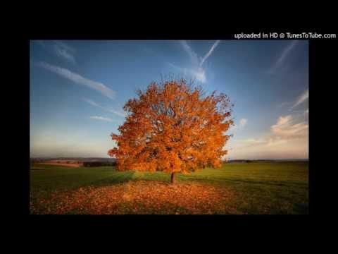 HOMIE - Выпускной (by VANYA) - слушать mp3 на большой скорости