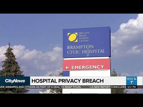 Brampton Civic Hospital employee stole opioids: police