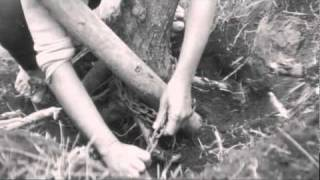 The Naked Island (1960, OST) & Frida Boccara - L' Île Nue (1969, cover)