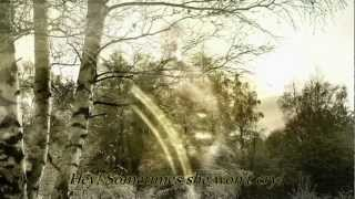 Soundgarden - Bones of Birds - with Lyrics - HD