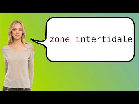 How to say 'intertidal zone' in French?